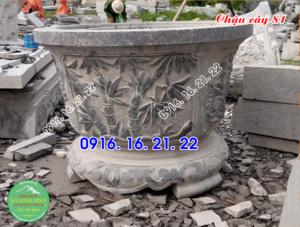 25 mẫu ang chậu cây cảnh bằng đá đẹp giá rẻ 81