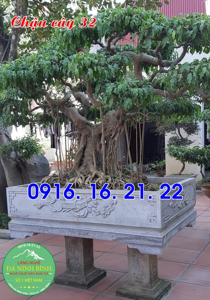 Chậu cây cảnh chậu đá bonsai bằng đá tự nhiên