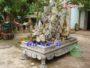 Chậu đá trồng cây đẹp 54