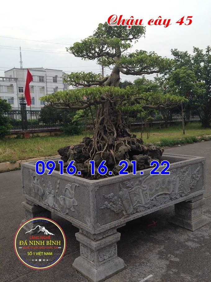 Mẫu ang cây cảnh trồng cây bằng đá nguyên khối đẹp